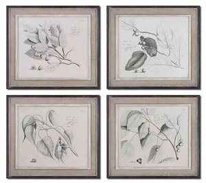 Sepia Leaf Study Wall Art with Wooden Base - Set of 4 Brand Uttermost