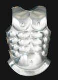 Steel Muscle Armor  Knights Gladiator Roman Body Cover Brand Wild Orchid