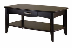 Stylish Danica Coffee Table with Single Drawer by Winsome Woods