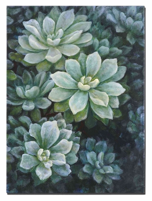 Succulents Floral Canvas Art in Glossy Finish Brand Uttermost