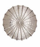 The Fine Stainless Steel Wall Platter by Woodland Import