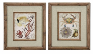 Tropical Waters Art with Dark Brown Wash - Set of 2 Brand Uttermost