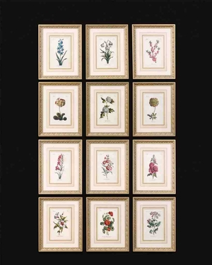 UT33493 FLOWER OF THE MONTH Set/12 Wall Decor by Grace Feyock Brand Uttermost