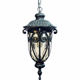 Viviana Collection Beautiful 1 Light Exterior Light Wall Mount in Oil -Rubbed Bronze by Yosemite Home Decor