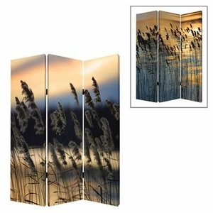 Whisper Reed 3 Panel Screen with Complementary Images on Canvas Brand Screen Gem