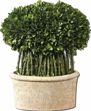 Willow Topiary Preserved Boxwood in Terracotta Planter Brand Uttermost