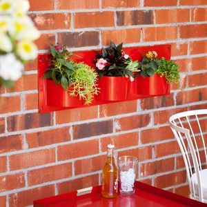 Wyllah Indoor/Outdoor Metal Wall-Mount Storage by Southern Enterprises