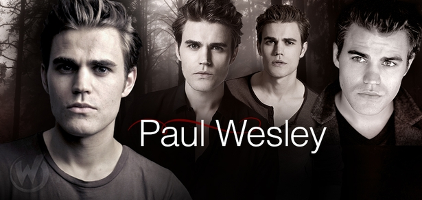 Paul Wesley, <i>Stefan Salvatore</i>, �The Vampire Diaries� Coming to