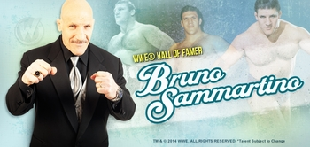 WWE� Hall of Famer Bruno Sammartino� Coming to Chicago Comic Con!