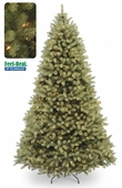"10' Poly ""Feel Real"" Delran Douglas Pre-Lit Tree (1000 Clear Lights)"
