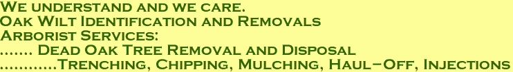We understand and we care. Oak Wilt Identification and Removals Arborist Services: ....... Dead Oak Tree Removal and Disposal ............Trenching, Chipping, Mulching, Haul-Off, Injections