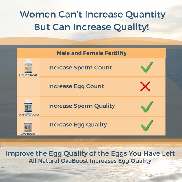 Reproductive Support Supplement - Improves Egg Quality
