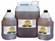Bulk Wholesale Raw Blue Weber Agave Nectar - Food Service