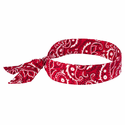 Ergodyne Chill-Its 6700 Neck Coolers - Cooling Bandanas