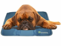 The Cool Pet Pad - Large