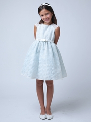 Blue Circle Embroidered Organza Dress