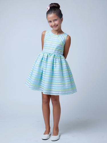 Blue Directional Stripe Organza Dress