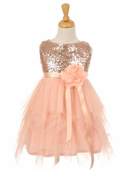 Blush Pink Sequin & Layered Tulle Dress
