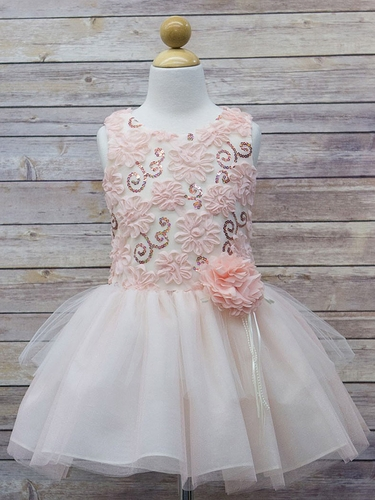 Blush Sequin 3D Floral Tutu Dress