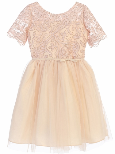 Champagne Cord Embroidered Mesh Dress