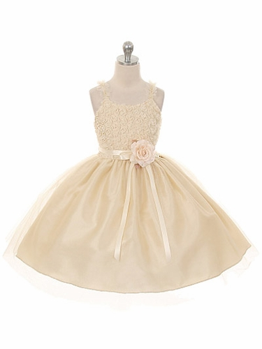 Champagne Embroidered Mesh Rose Dress w/ Tulle Skirt