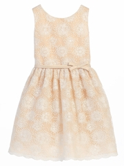 Champagne Flower Embroidered Mesh Dress