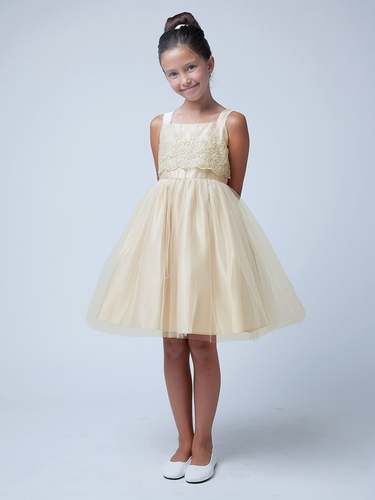 Champagne Metallic Embroidered Organza w/ Tulle Dress