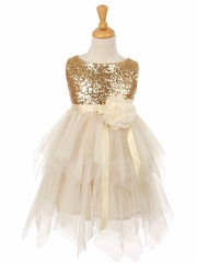 Champagne Sequin & Layered Tulle Dress