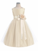 Champagne Vintage Satin Tulle Dress