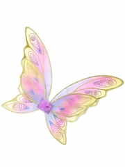 Glitter Rainbow Butterfly Wings