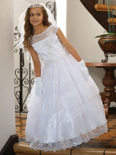 Illusion Neckline w/ Pearl Beads & Sequins Embroidered Organza Dress