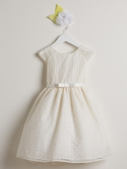 Ivory Circle Embroidered Organza Dress