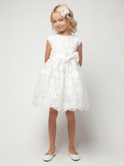 Ivory Spring Embroidered Organza Dress