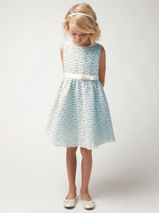 Light Blue Small Flower Embroidery Mesh Dress