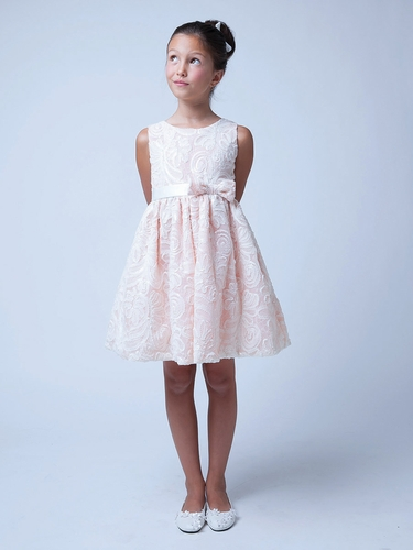 Peach Sequin & Ribbon Embroidered Mesh Dress