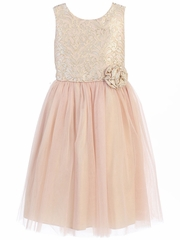 Pink Vintage Jacquard Tulle Dress