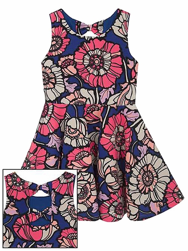 Rare Editions Royal & Neon Pink Floral Knit Skater Dress