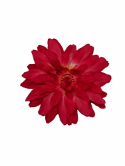 Red Large Gerber Daisy Flower on Clip