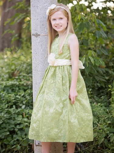 Sage Cord Embroidered Taffeta Dress