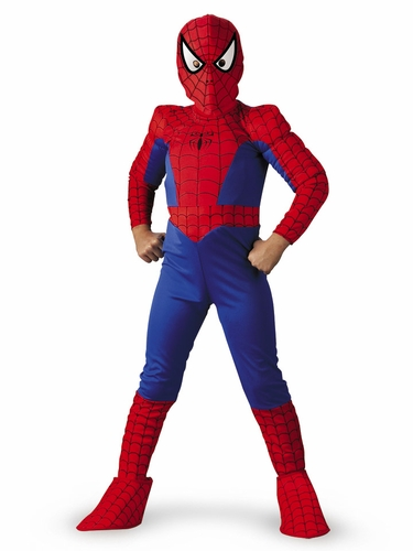 Spider-Man Deluxe Boy Costume