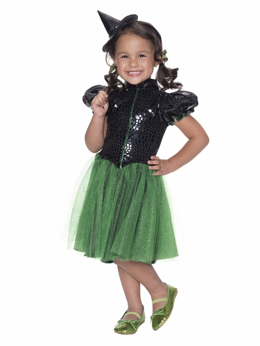 The Wizard Of Oz Wicked Witch Of The West Sequin Costume