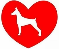 Doberman Heart Decal