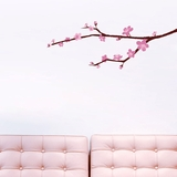 Cherry Blossom Branch - Printed Wall Decals