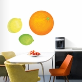 Orange Lemon Lime Printed Decal Pack | Printed Wall Decals