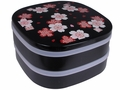 Bento Boxes & Containers