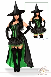 5 PC Sexy Wicked Witch Costume - IN STOCK