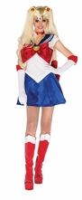 Sexy Sailor Moon Costume