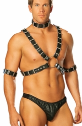 L9663 4pc Mens Leather Harness Set with Arm Bands and Leather Collar