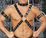4pc Mens Leather Harness Set with Arm Bands and Leather Collar L9663