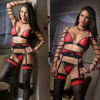 L1316 4pc Passionate Exotic Bra & Garter Belt Set by Gworld